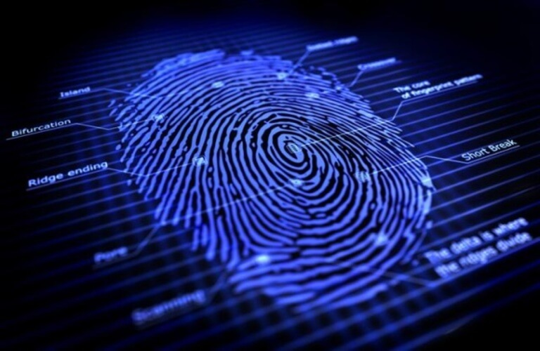Đầu đọc dấu vân tay sử dụng công nghệ tiên tiến, cho tốc độ đọc chính xác